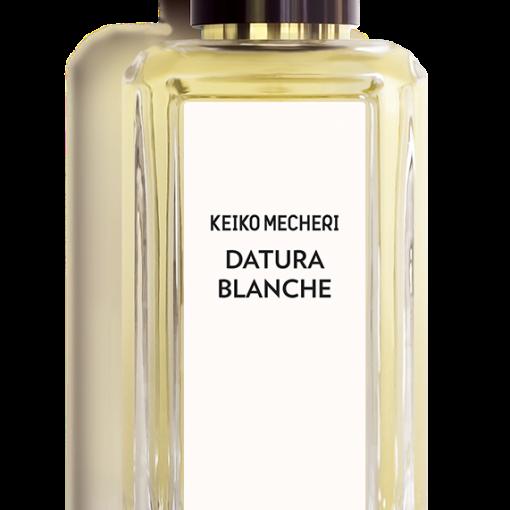 Datura Blanche