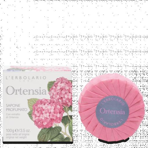 Ortensia sapone 100