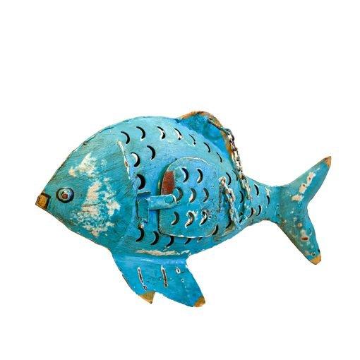 Pesce Lanterna Turchese