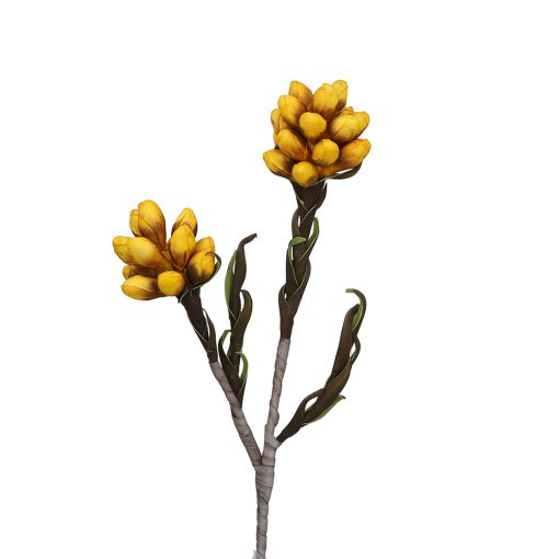 Flora Fiore Giallo