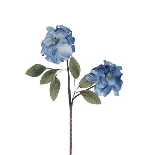 Flora Blu Rosa