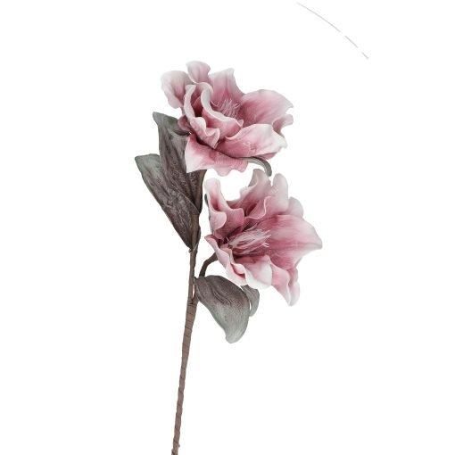 Flora Bianco Rosa Mirabel