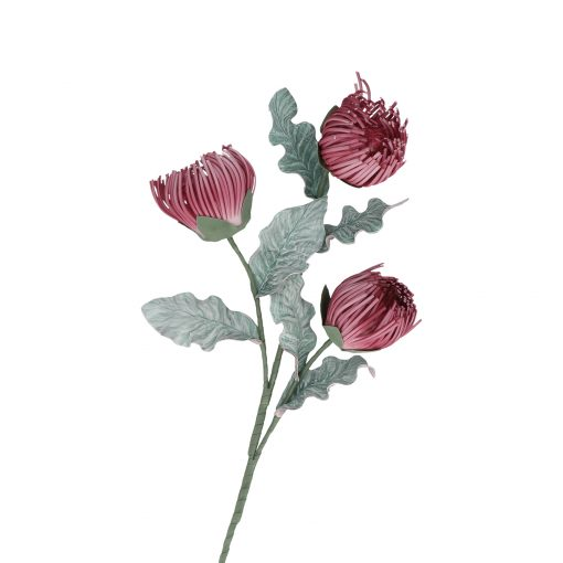 Flora Rosa Crisos
