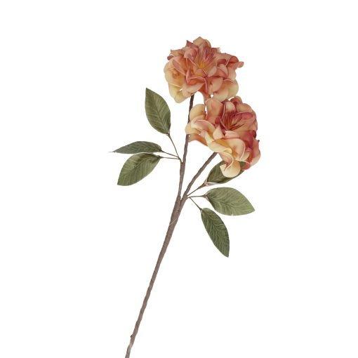 Flora Giallo Lilla Rosa
