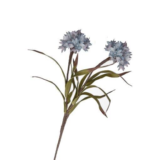 Flora Lilla Bromelia