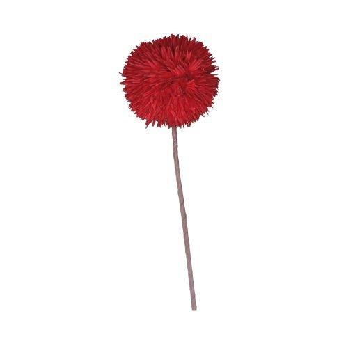 Flora Rosso Dianthus