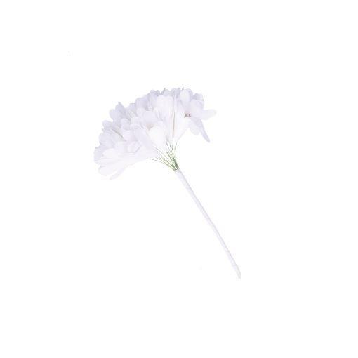 Flora Bianco Oro Alstroemeria
