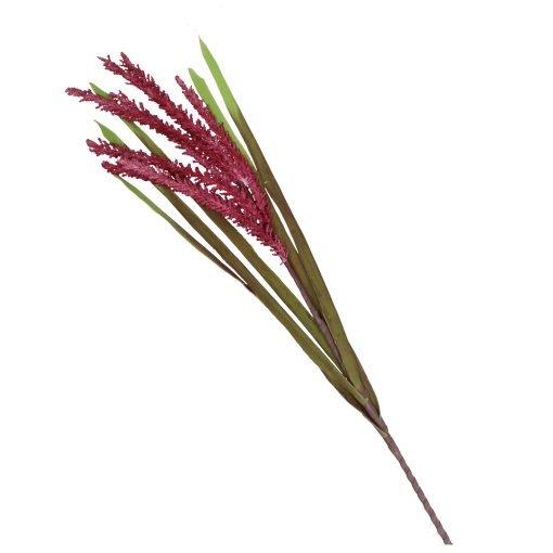 Flora Rosa Avena