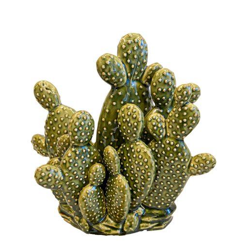 Cactus Summer in Italy L