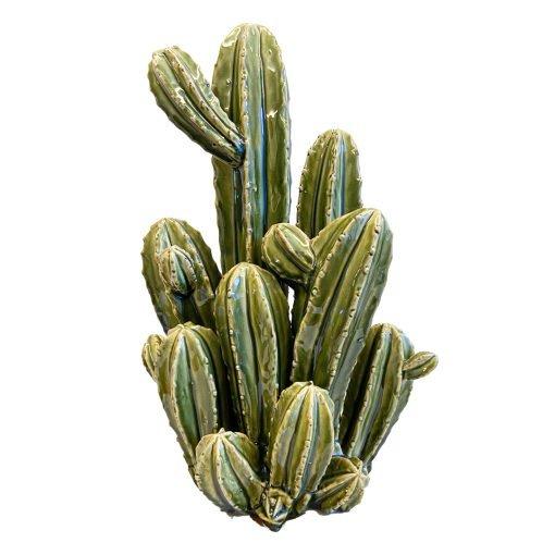 Cactus Winter in Italy L
